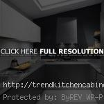Pale Grey Kitchen Cabinets 150x150 Grey Kitchen Cabinets and Cheerful Kitchens