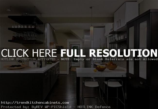 Dark Kitchen Cabinets With Dark Hardwood Floor